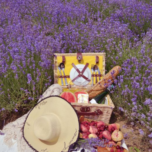 Picknick im Lavendel Feld