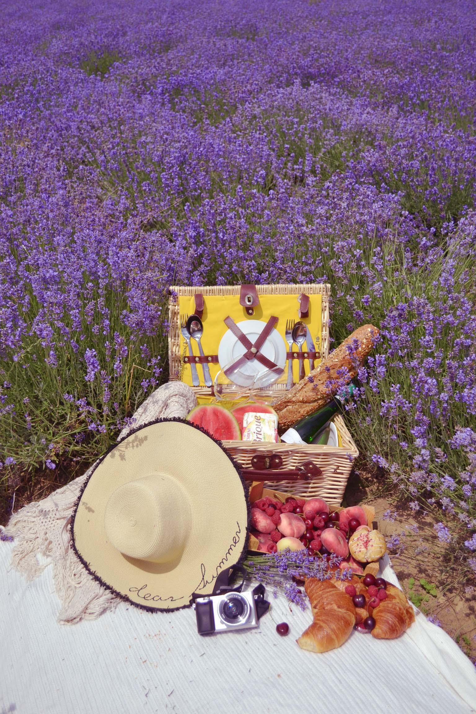Provence in Deutschland entdecken oder warum man in der Heimat Urlaub machen soll