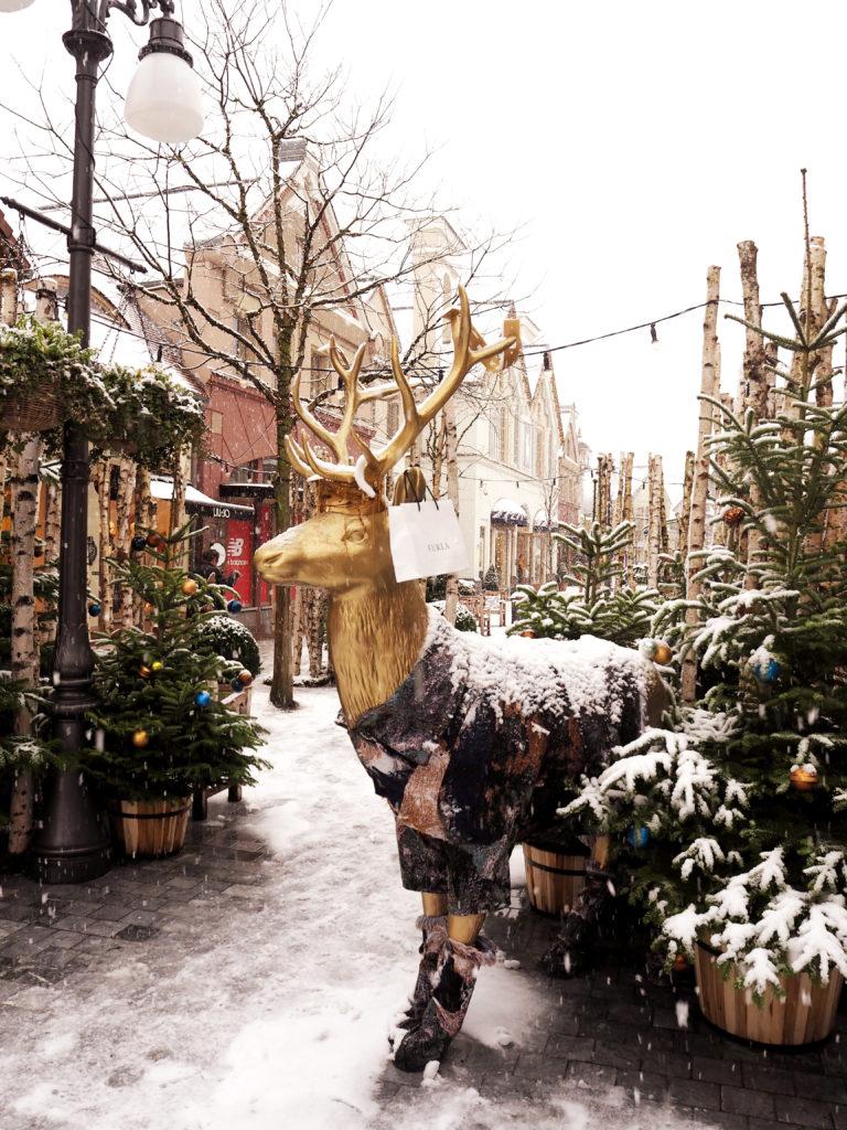 Weihnachtszeit in Maasmechelin
