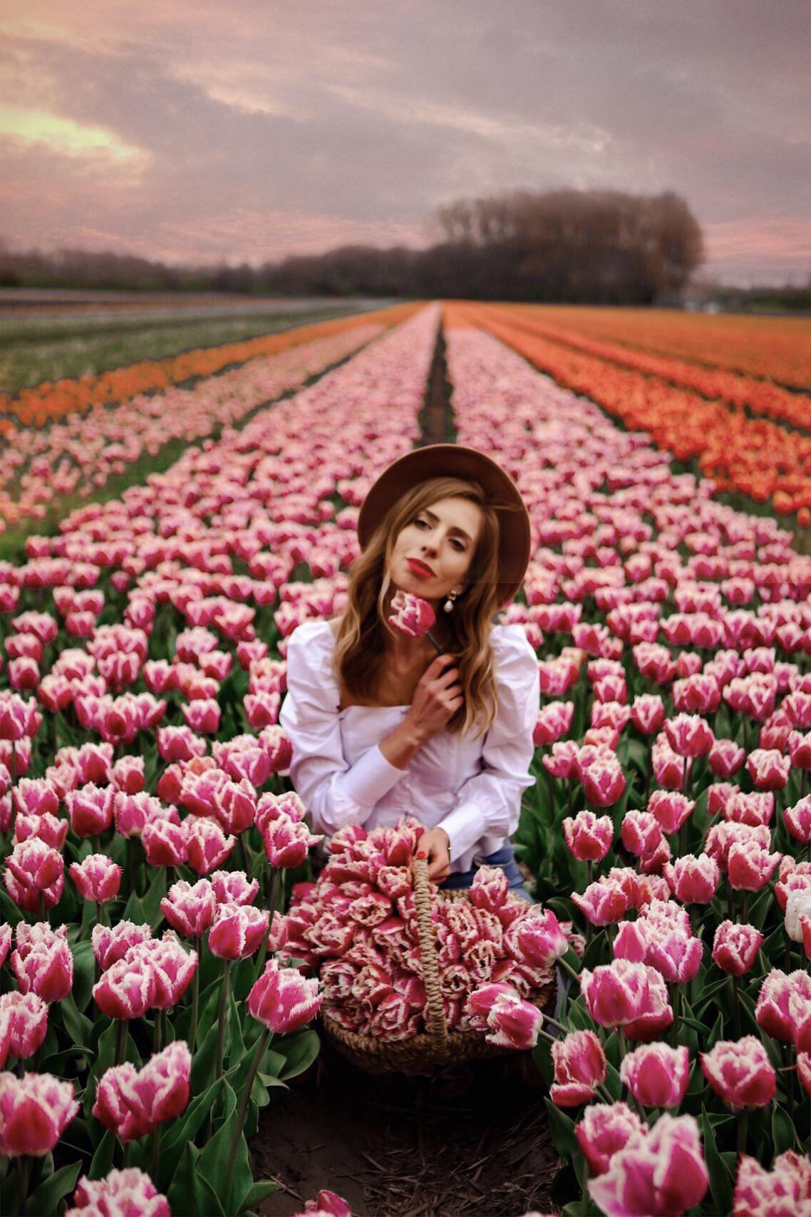 Tulpenfelder in Holland: die besten Reisetipps